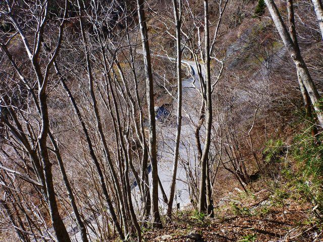 ふるさと林道大栃線
