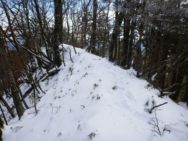 石立山縦走路