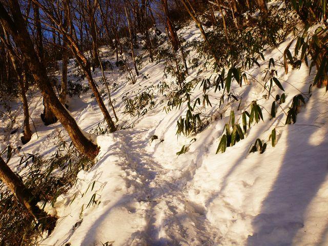 寒風山登山道
