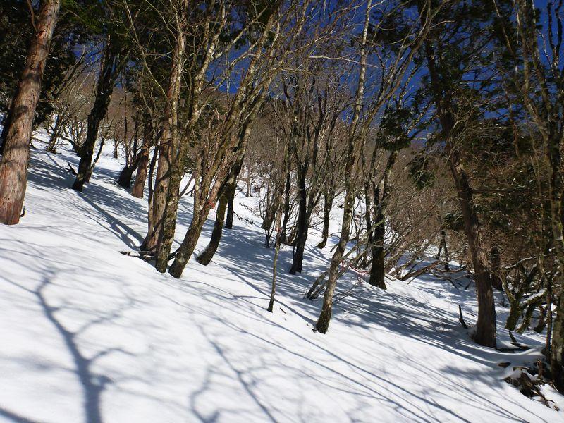 白髪山ショートカットコース
