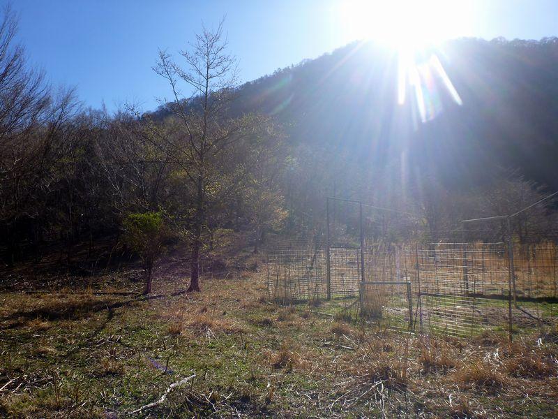 光石放牧場跡