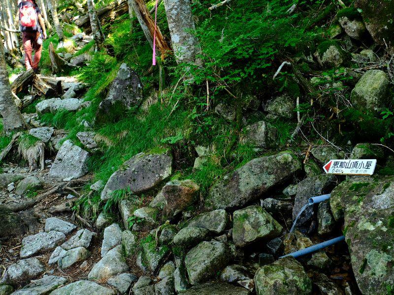 恵那山登山道
