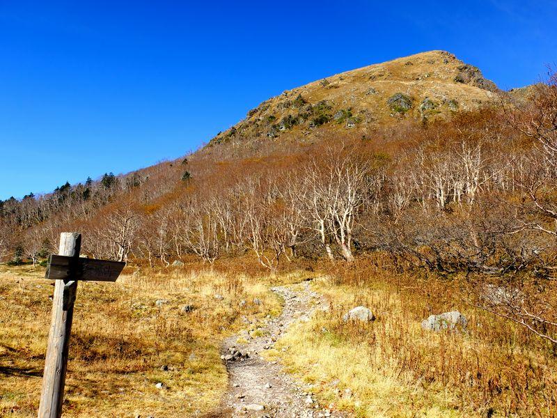 白根登山道