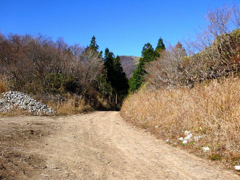 綱附森登山口