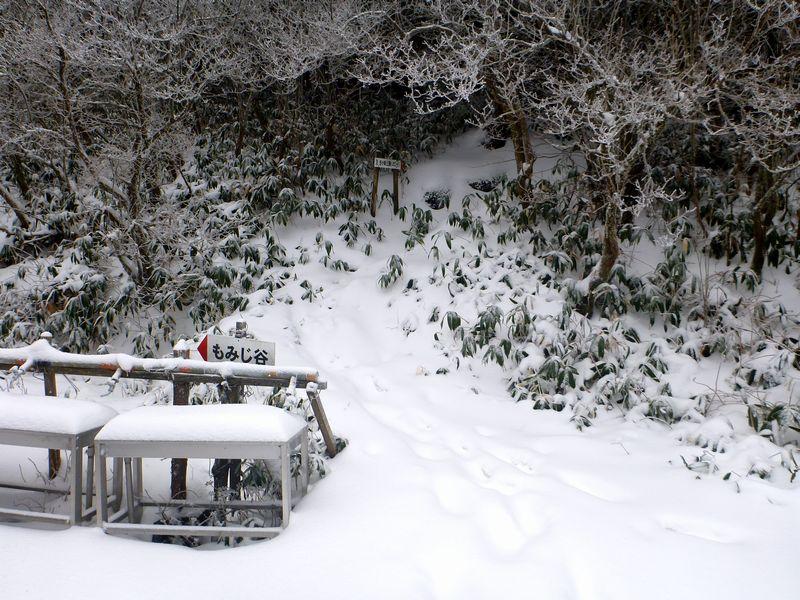 笹ヶ峰登山道