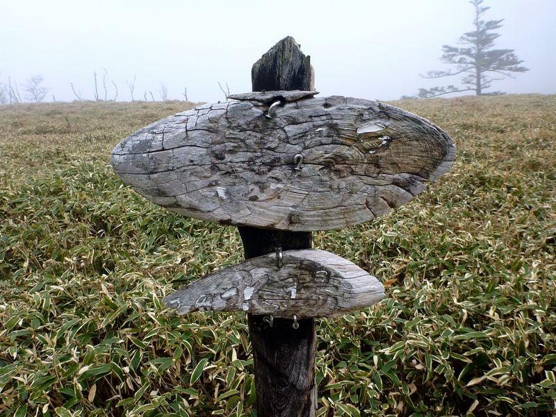 お亀岩キャンプ場