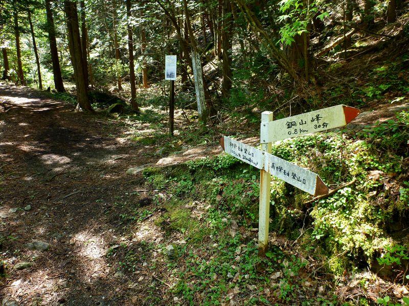 銅山峰・柳谷コース・馬の背コース分岐