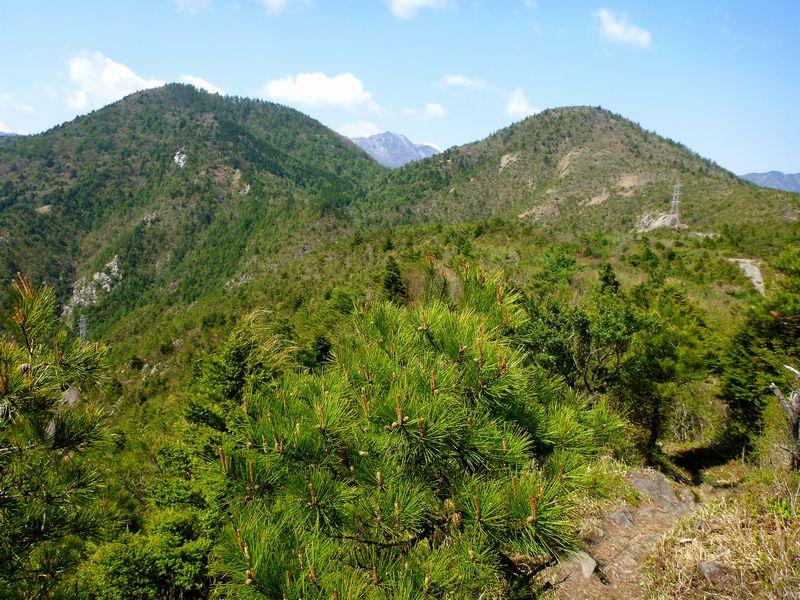 ツナクリ山