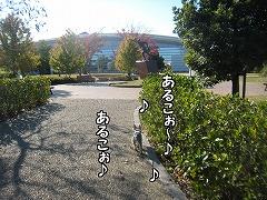 あるこぉ〜♪