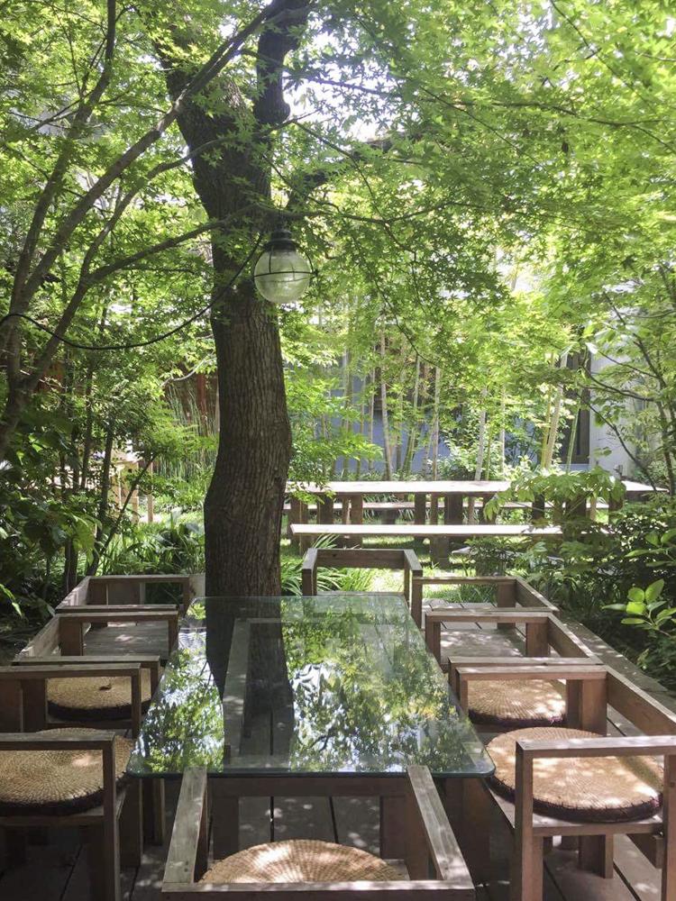 木村家の庭