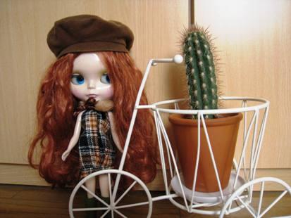 サボテンと自転車とアシュリー