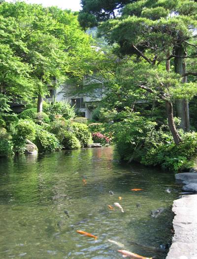 吉池旅館の庭