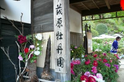 茂原牡丹園の入口