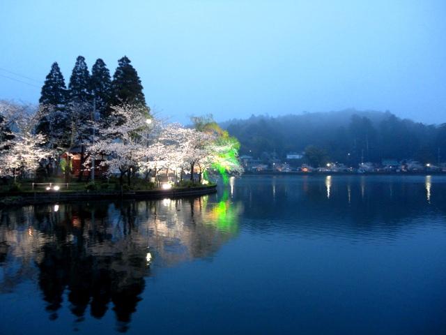 夜桜・八鶴湖