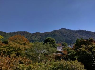橋本関雪記念館テラス