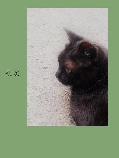 kuro.png