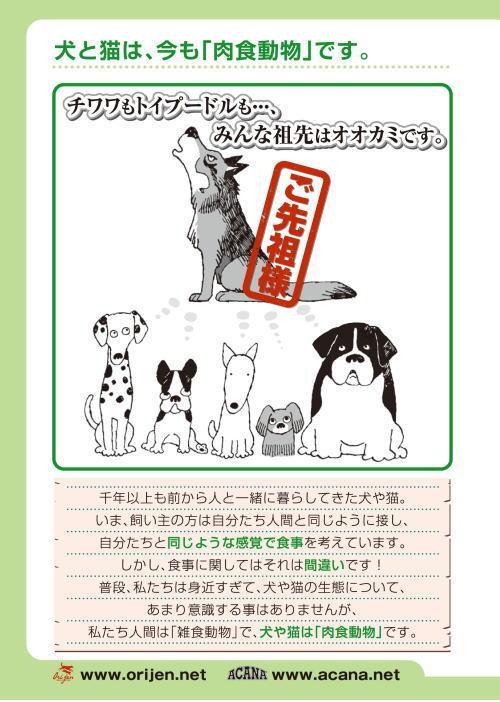 オリジン漫画 犬は肉食