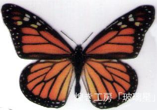 1202.jpg
