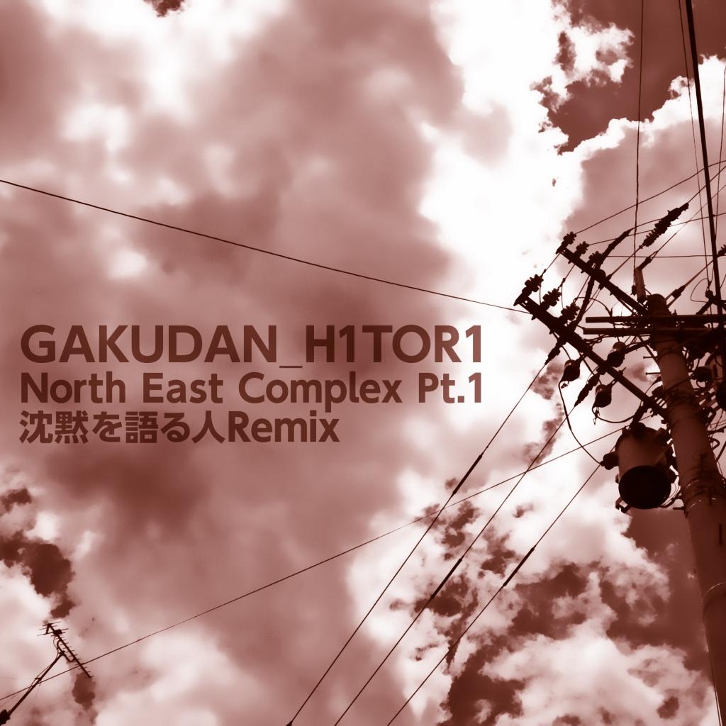 GAKUDAN_H1TOR1 / North East Complex Pt.1 (沈黙を語る人 Remix)