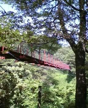 山のつ〜り橋ぃ〜(古