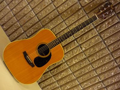 Pearl Guitar