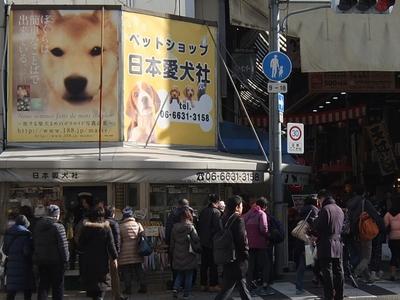 日本愛犬社(黒門市場)