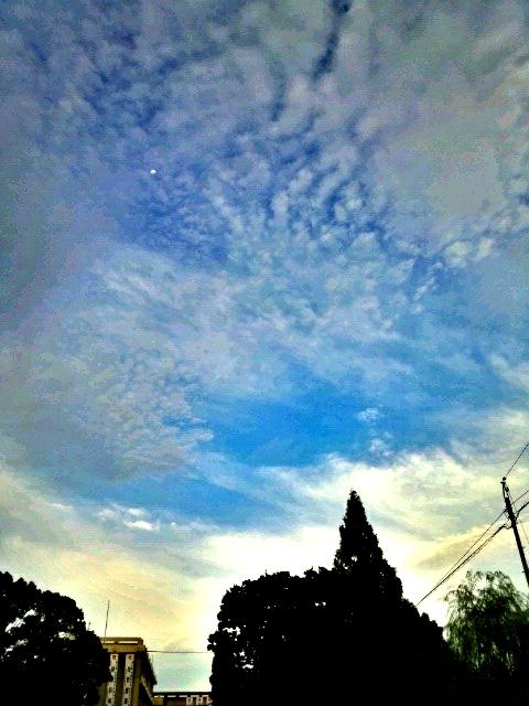 C360_2012-09-06-06-21-37.jpg