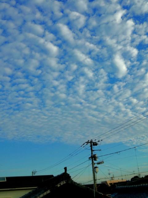 C360_2012-10-13-07-05-21.jpg