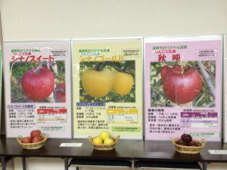 農業試験場・9