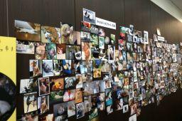ふるさとのねこ展・壁写真7・29