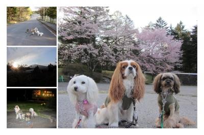 2012GW軽井沢-01.jpg
