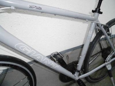 CIMG4992.JPG