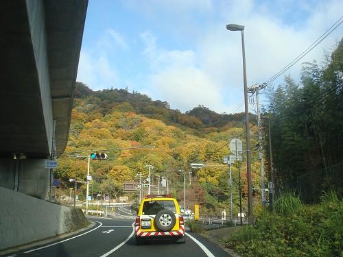 宝塚の山の紅葉