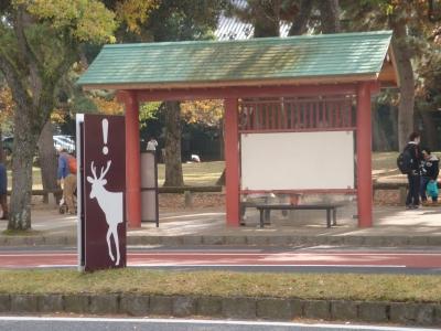 奈良市内の道路にて