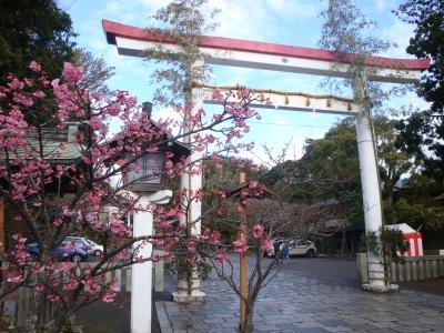 鎌倉宮_20170109