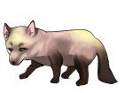 赤狐(セキコ)という妖怪もいることはいるよ!