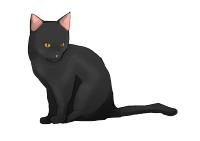 週末の大通りを 黒猫が歩く ご自慢の鍵尻尾を水平に 威風堂々 その姿から猫は 忌み嫌われていた 闇に解けるその体めがけ石を投げられた(うろ覚え)