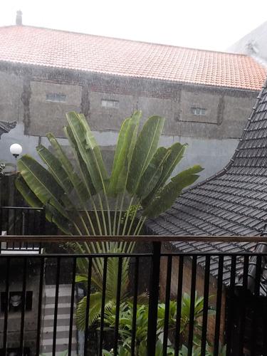 20150220大雨