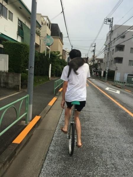 ブログ377 001.jpg