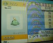 20061122_157885.jpg