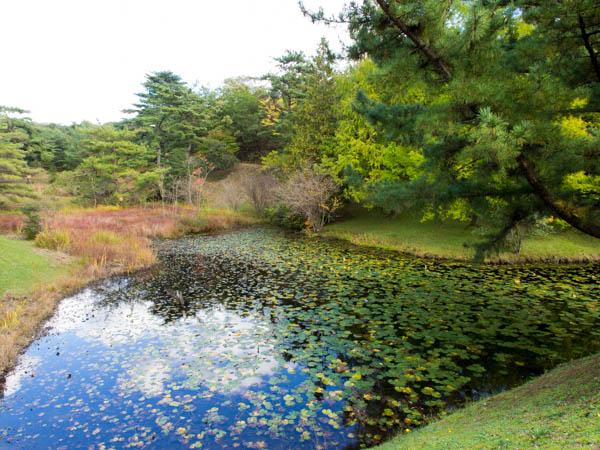 モリコロパークの庭園1