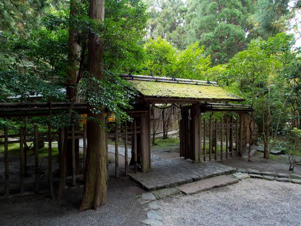 鈴松庵の庭