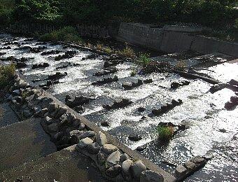 初秋の河原