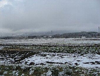 冬景色2009・1