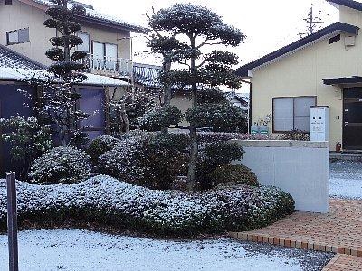 2010年初雪