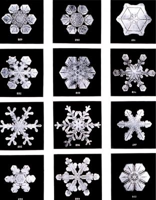 雪の結晶 ウィルソン・ベントレー