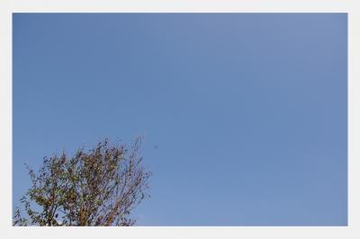 2010.09 050.jpg