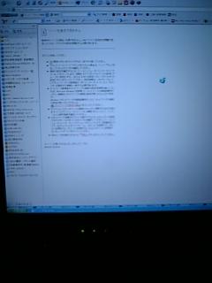 20061229_206457.jpg