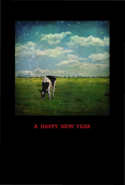クールな牛の年賀状2009 無料素材 黒背景   年賀状2009 無料素材、画像