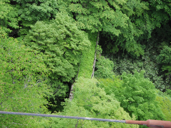 北温泉旅館 つつじ吊橋 廃橋
